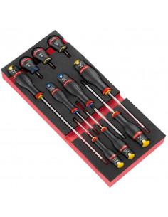 Module 10 tournevis Protwist® dont 3 boules en plateau mousse - MODM.A5 - Facom